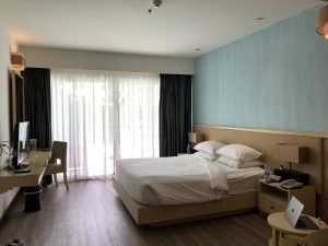 dvaree_hotel_room